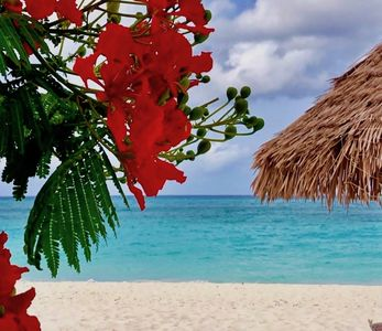 MAY SPECIAL  10% OFF ! Blue Suites, 8 Min Walk To Ritz & Marriott beach