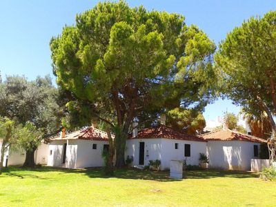 Photo for Little Cottage in Pedras Del Rei Algarve