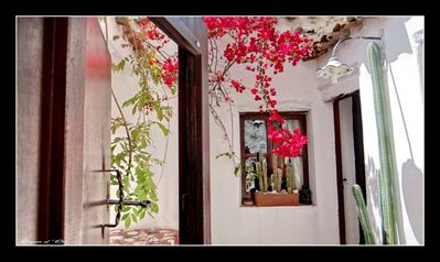 Photo for Typical ,ancient house , of 1600 in historical center and calm place -Beach 1,5 km ...studio flat - 1 room - 2/4 persons