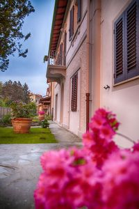 Photo for Apartment in Liberty Villa between Siena, Arezzo and Florence Free Wifi