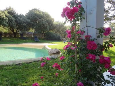 Photo for Character villa between Luberon and Aix on 5000m² of oaks and pines