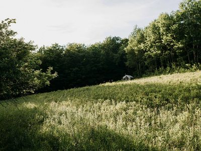 Photo for Tentrr Signature - Dry Brook Ridge Meadow