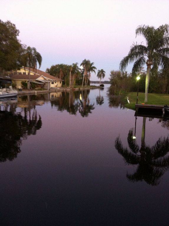 Waterfront condo with boat slip palm harbor - Florida condo swimming pool rules ...