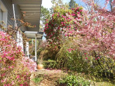 Photo for Crabapple Cottage - Quiet, secluded, pet friendly.