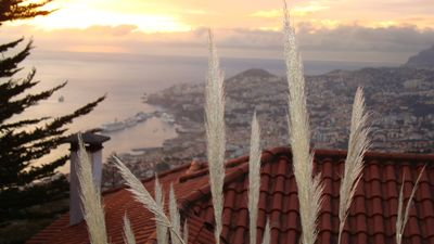 Photo for Charming Apartment in Funchal, Great Gardens, Splendid View
