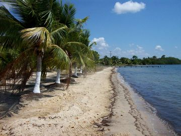 Independence and Mango Creek, Stann Creek, Belize