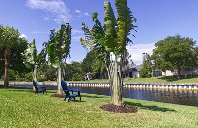 Travelers Palms line the canal swaying gently in tropical breezes!