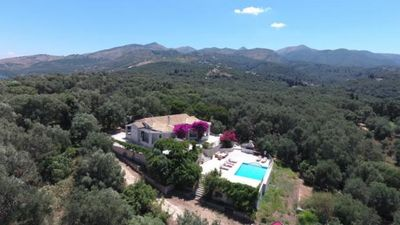 Aerial view of the Olive Grove