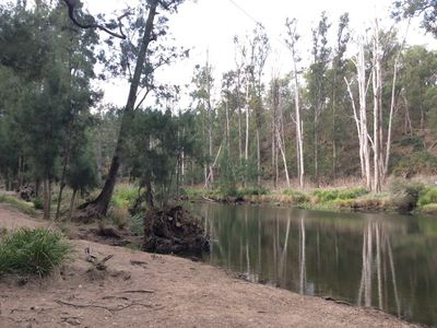 Photo for Secluded Riverside Bush Hut