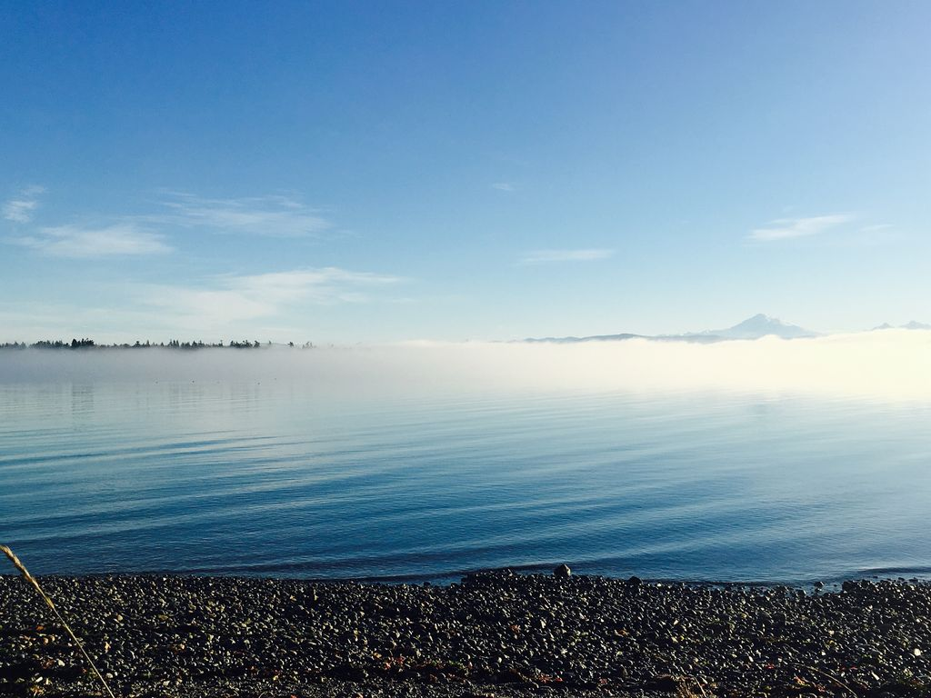Relax On Your Own Beach 100 Of Low Bank Waterfront Lummi