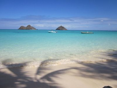 Photo for Footsteps to Hawaii's Best Beach