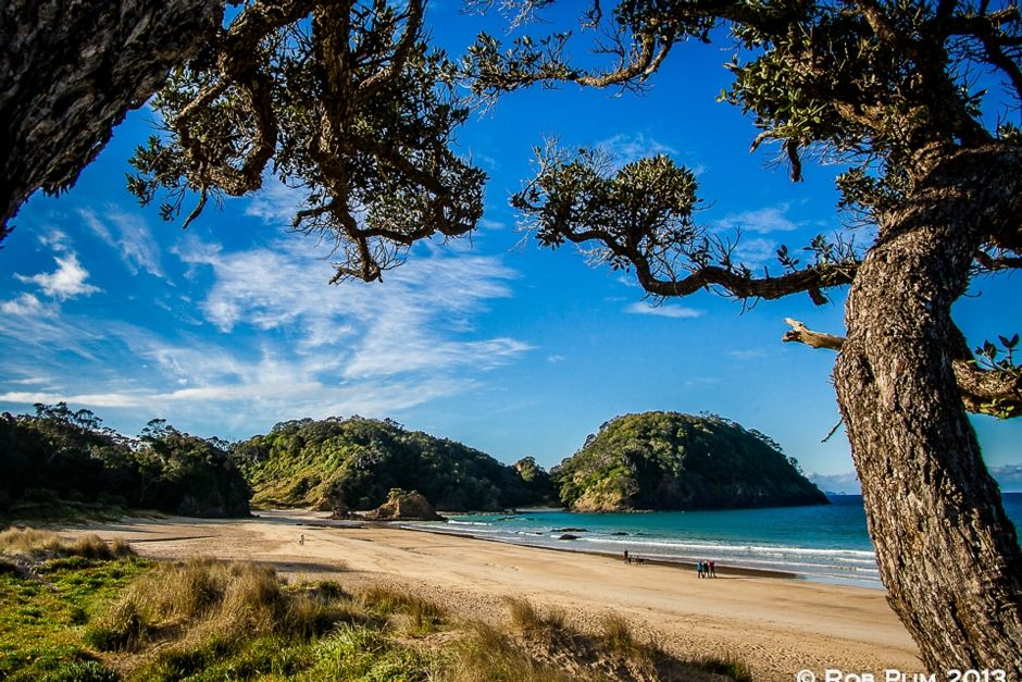 Nellie's Beach Cottage at Matapouri Bay