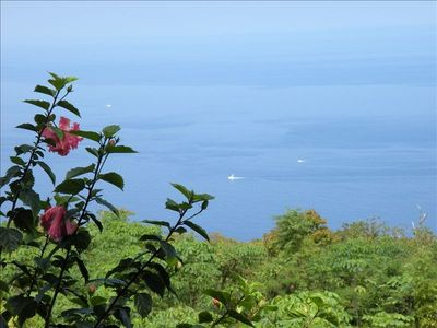 Your  Heavenly OceanView from the cottage lanai