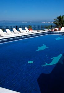 Rooftop pool with 360 view
