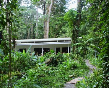 Photo for Boutique, Designed, Modern, Peaceful Jungle House