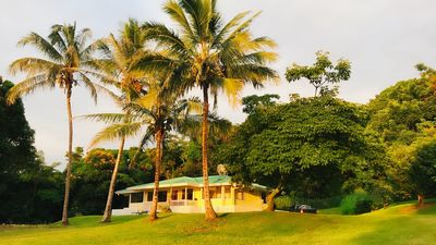 3 bedroom 2 bathroom house with ocean view on 5 secluded acres.