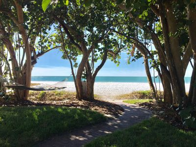 Photo for Overlooking Beach on Siesta Key - Sand Dollar and Starfish Units