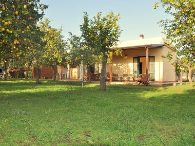 Photo for Casale della Pergola, eco-friendly farmhouse by the sea, countryside with lemons, vineyard, olive grove. Wi-fi, AC. 6 sleeps,