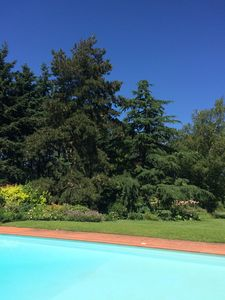 "Photo for ""La Maisonnette"" Charming stays in a quiet garden West Techlid Lyon"