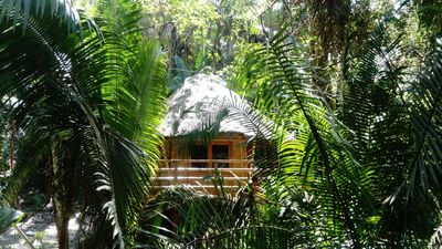 Photo for Romantic Ecolodge in the Jungle by the Sea