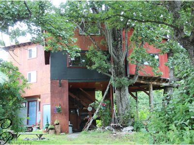 Photo for Tree House/Full Ammenities