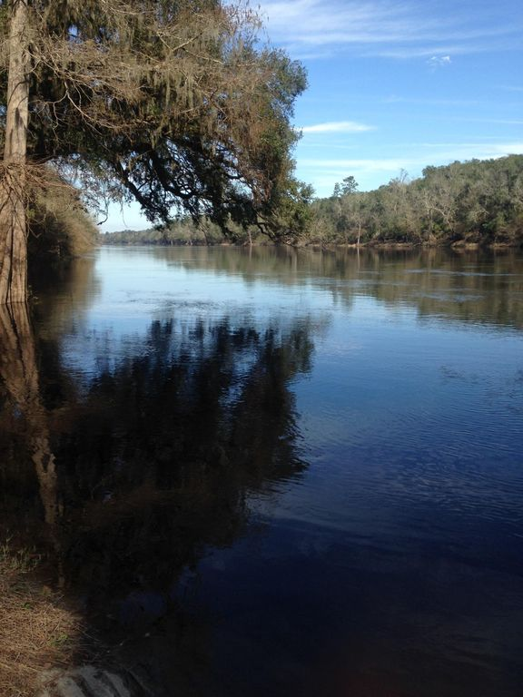 Florida Suwannee River Living Will Let You Get Away From