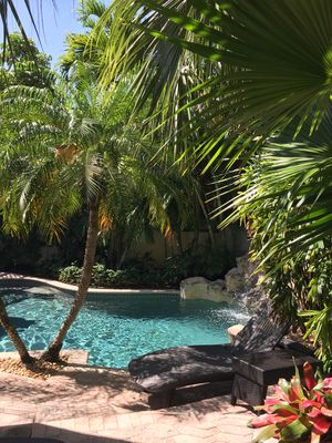 Tropical Paradise surrounding the private pool