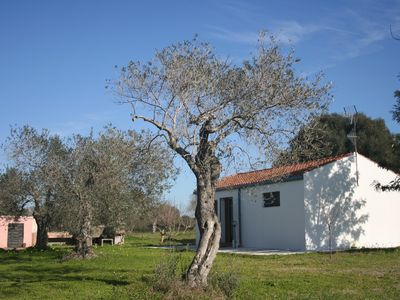 Photo for House a few minutes from Alghero beaches