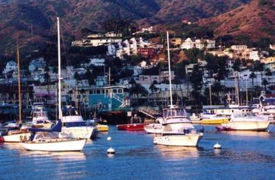 Photo for A Catalina Island Vacation Rental