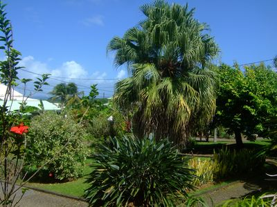 Photo for Bungalows in tropical garden Guava.