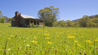 Photo for Moonbah River Hut Jindabyne - free schnapps & Swiss chocolates for winter stay
