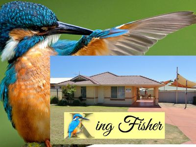 Photo for King Fisher - Kalbarri, WA