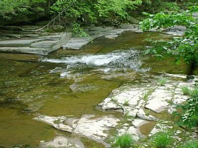 The Sawkill Stream by the Teahouse.