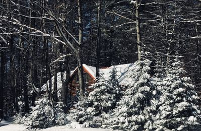 Photo for Beautiful Cabin for an affordable Getaway!