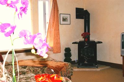 Enjoy an evening of warmth with our Waterfront Fireplace