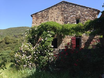 Photo for MAGNANERIE OLD IN CEVENNES