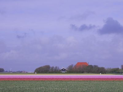 Photo for House in a barn next to residential farm 800 meters from the North Sea