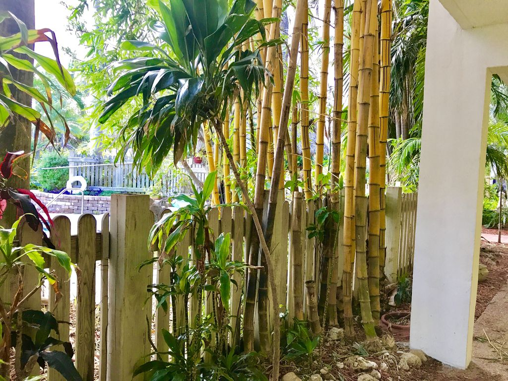 Newly Renovated Luxury 2 Br By The Beach For 6 In Pompano, Large ...