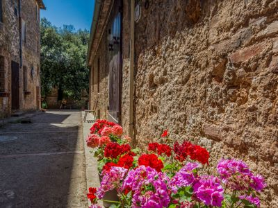 Photo for Apartment Il Cardo  in Sovicille, Siena and sourroundings - 6 persons, 3 bedrooms