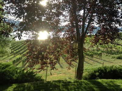 Photo for Naramata – Stunning Views of Vineyards And Sunsets