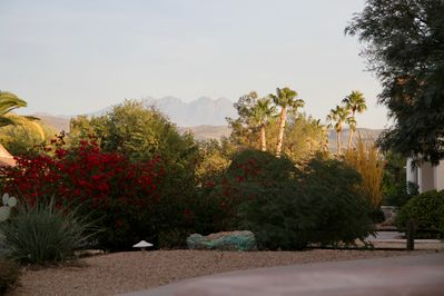 Four Peaks view from front