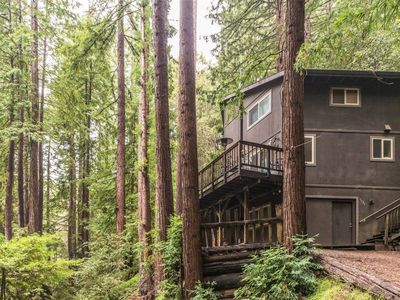Photo for Cottage in the Redwoods