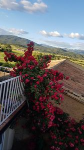 Photo for House in Sieso de Huesca (wine route of the somontano)