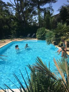 Photo for Provencal villa with its large pines and swimming pool