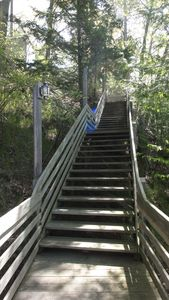 Stairs down bluff to secluded cottage.