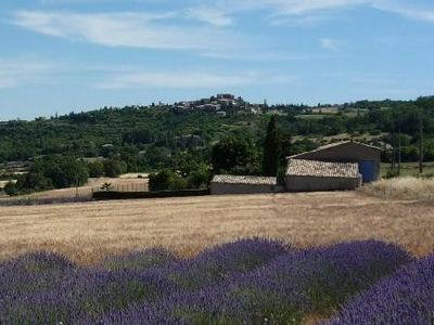 Photo for Provencal farm with pool at the heart of Luberon