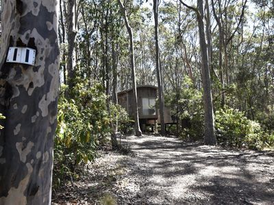 Photo for 11 Burrawong Place - Bushland Haven