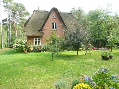 Photo for Thached roof house in Nebel on the island Amrum - located in the beautiful woods