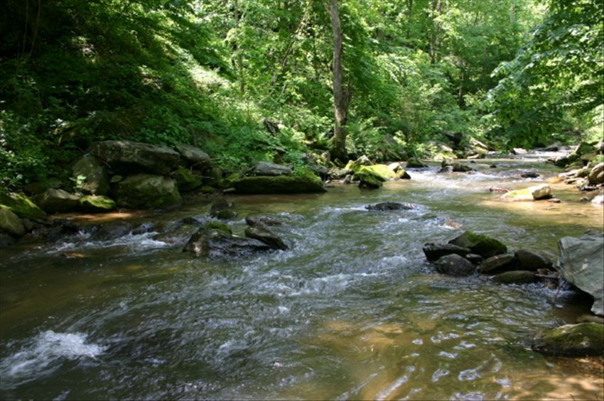 Trout stream 11 acres with waterfalls hot vrbo for Fish and stream