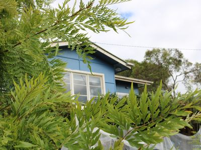 Photo for 4BR House Vacation Rental in Lorne, VIC